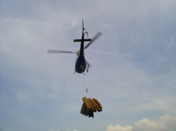 Helinorth Helicoptertimber logs